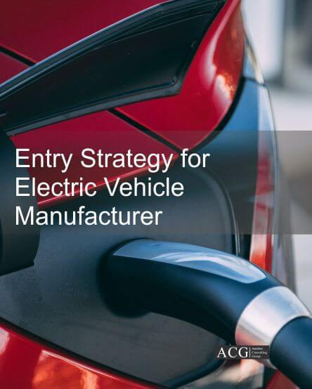 Entry Strategy for Electric Vehicle Manufacturer