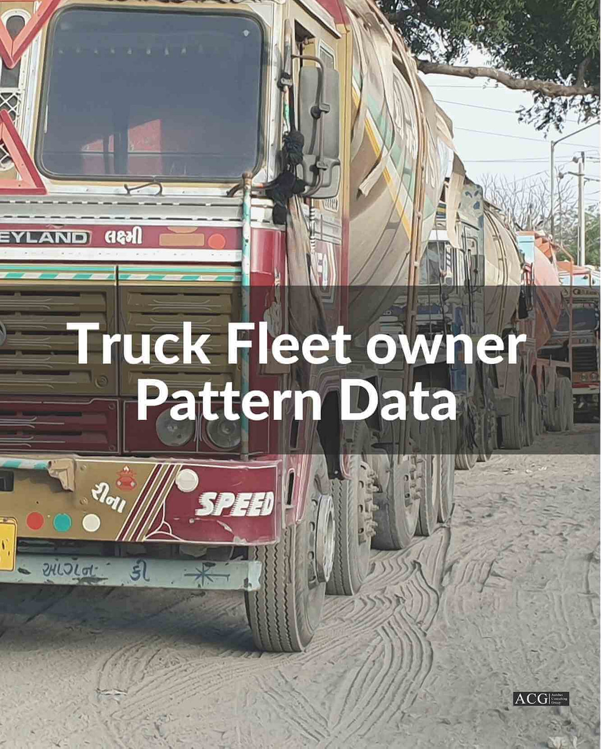 Truck Fleet Owner Data 2020
